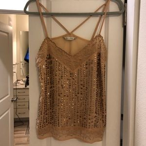 Zara Pinkish nude Top with Embellishment